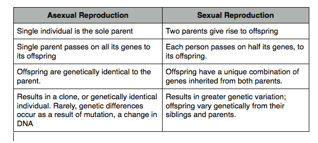 compare sexual reproduction and asexual reproduction